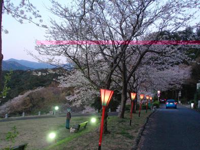 5ougonnzaki20104.jpg
