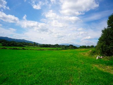 fukuchann2010108.jpg