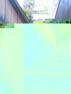 gazou-0875.jpg