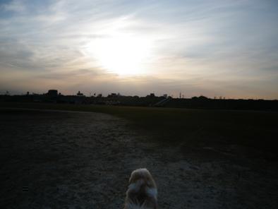 miwatasu201012.jpg