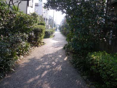 nakayoshikomiti.jpg
