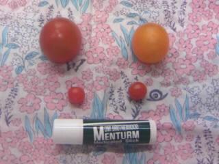 tomato2010072.jpg