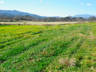 urayama201011.jpg